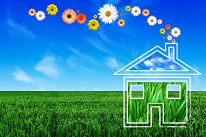 renovation ecologique